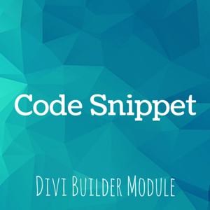 How to add Code Snippets in Divi Builder